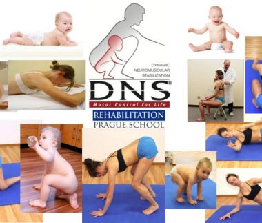 dynamic neuromuscular stabilization
